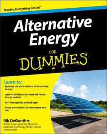 Alternative Energy For Dummies av Rik DeGunther (Heftet)