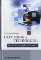 Data Mining in Grid Computing Environments (Innbundet)