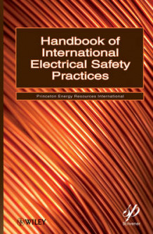 Handbook of International Electrical Safety Practices av Princeton Energy Resources International og Political Economy Research Institute (Innbundet)