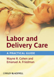 Labor and Delivery Care av Wayne R. Cohen og Emanuel A. Friedman (Innbundet)