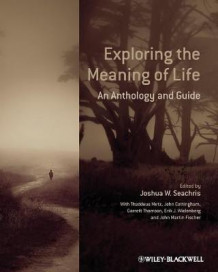 Exploring the Meaning of Life (Heftet)