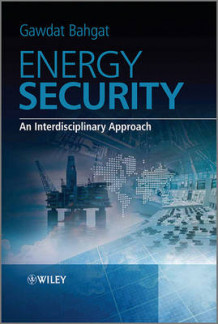 Energy Security (Innbundet)