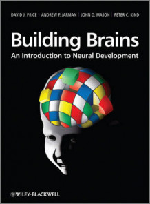 Building Brains av David Price, Andrew P. Jarman, John O. Mason og Peter C. Kind (Heftet)