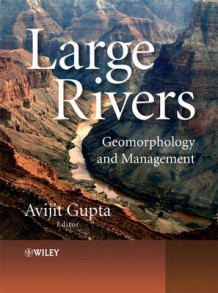 Large Rivers - Geomorphology & Management (Innbundet)