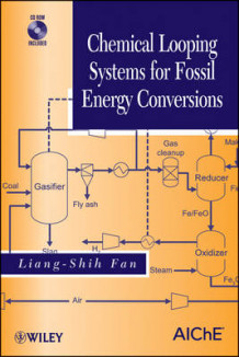 Chemical Looping Systems for Fossil Energy Conversions av Liang-Shih Fan (Innbundet)