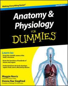 Anatomy & Physiology For Dummies av Donna Rae Siegfried og Maggie Norris (Heftet)