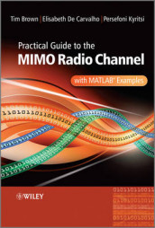 Practical Guide to MIMO Radio Channel av Tim Brown, Elizabeth De Carvalho og Persefoni Kyritsi (Innbundet)