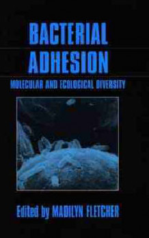 Bacterial Adhesion (Innbundet)