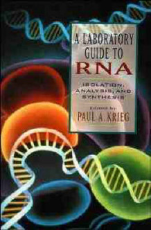 A Laboratory Guide to RNA (Heftet)