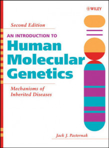 An Introduction to Human Molecular Genetics av Jack J. Pasternak (Innbundet)