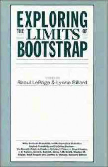 Exploring the Limits of Bootstrap (Innbundet)