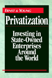 Privatization av Ernst & Young (Innbundet)