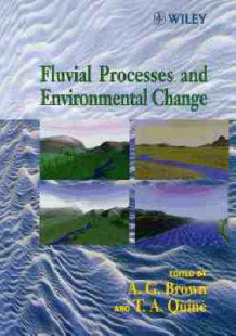 Fluvial Processes and Environmental Change (Innbundet)