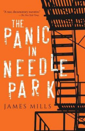 Panic in Needle Park av James Mills (Heftet)