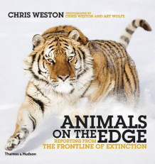 Animals on the edge av Chris Weston (Innbundet)
