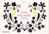 From Tiny Seeds av Emilie Vast (Innbundet)