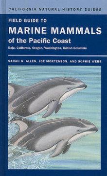 Field Guide to Marine Mammals of the Pacific Coast av Sarah G. Allen, Joe Mortenson og Sophie Webb (Innbundet)