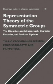 Representation Theory of the Symmetric Groups av Tullio Ceccherini-Silberstein, Fabio Scarabotti og Filippo Tolli (Innbundet)