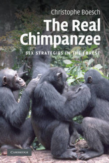 The Real Chimpanzee av Christophe Boesch (Heftet)