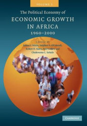 The Political Economy of Economic Growth in Africa, 1960-2000: Volume 1 av Robert H. Bates, Paul Collier, Benno J. Ndulu, Stephen A. O'Connell og Chukwuma C. Soludo (Heftet)