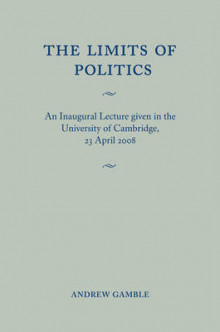 The Limits of Politics av Andrew Gamble (Heftet)