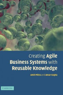 Creating Agile Business Systems with Reusable Knowledge av Amitava Mitra og Amar Gupta (Innbundet)
