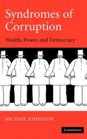 Syndromes of Corruption av Michael Johnston (Innbundet)