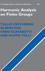 Harmonic Analysis on Finite Groups av Tullio Ceccherini-Silberstein, Fabio Scarabotti og Filippo Tolli (Innbundet)