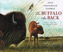 The Buffalo Are Back av Jean Craighead George (Innbundet)