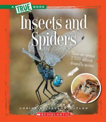 Insects and Spiders av Christine Taylor-Butler (Heftet)
