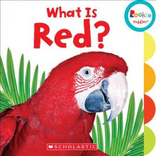 What Is Red? av Various (Pappbok)
