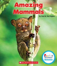 Amazing Mammals av Lisa M Herrington (Heftet)