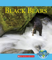 Black Bears av Timothy M Daly (Heftet)