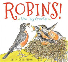 Robins! How they Grow Up av Eileen Christelow (Innbundet)