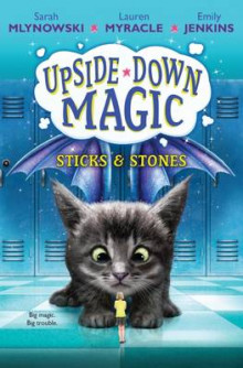 Sticks & Stones (Upside-Down Magic #2) av Sarah Mlynowski (Innbundet)
