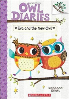 Eva and the New Owl av Rebecca Elliott (Heftet)