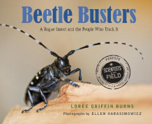 Beetle Busters av Loree Griffin Burns (Innbundet)