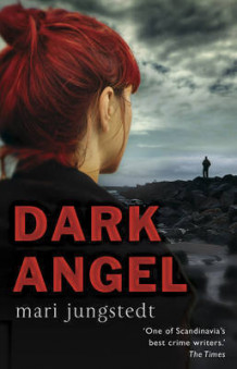 Dark Angel av Mari Jungstedt (Heftet)