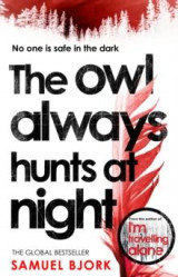 Omslag - The owl always hunts at night