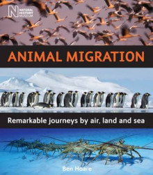 Animal Migration av Ben Hoare (Innbundet)