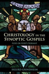 Christology in the Synoptic Gospels av Sigurd Grindheim (Heftet)