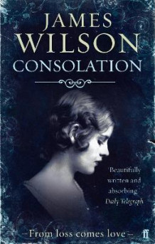 Consolation av James Wilson (Heftet)