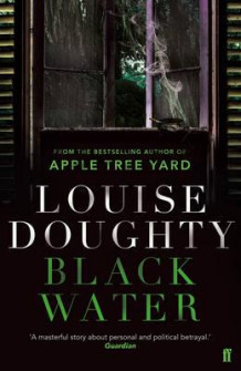 Black water av Louise Doughty (Heftet)
