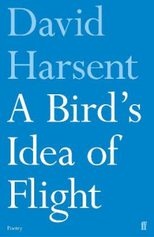 A Bird's Idea of Flight av David Harsent (Heftet)