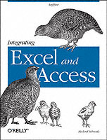 Integrating Excel and Access av Michael Schmalz (Heftet)