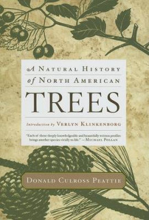 A Natural History of North American Trees av Deceased Donald Culross Peattie (Innbundet)