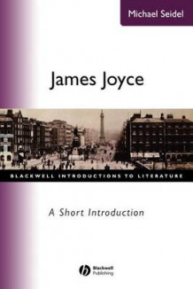 James Joyce av Michael Seidel (Heftet)