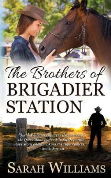 The Brothers of Brigadier Station av Sarah Williams (Heftet)