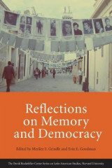 Omslag - Reflections on Memory and Democracy