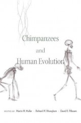 Omslag - Chimpanzees and Human Evolution